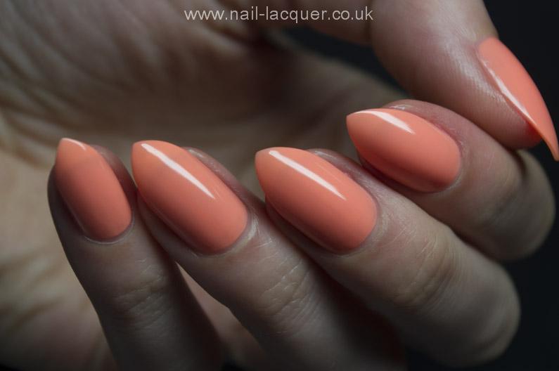 Pastel-peach (4)